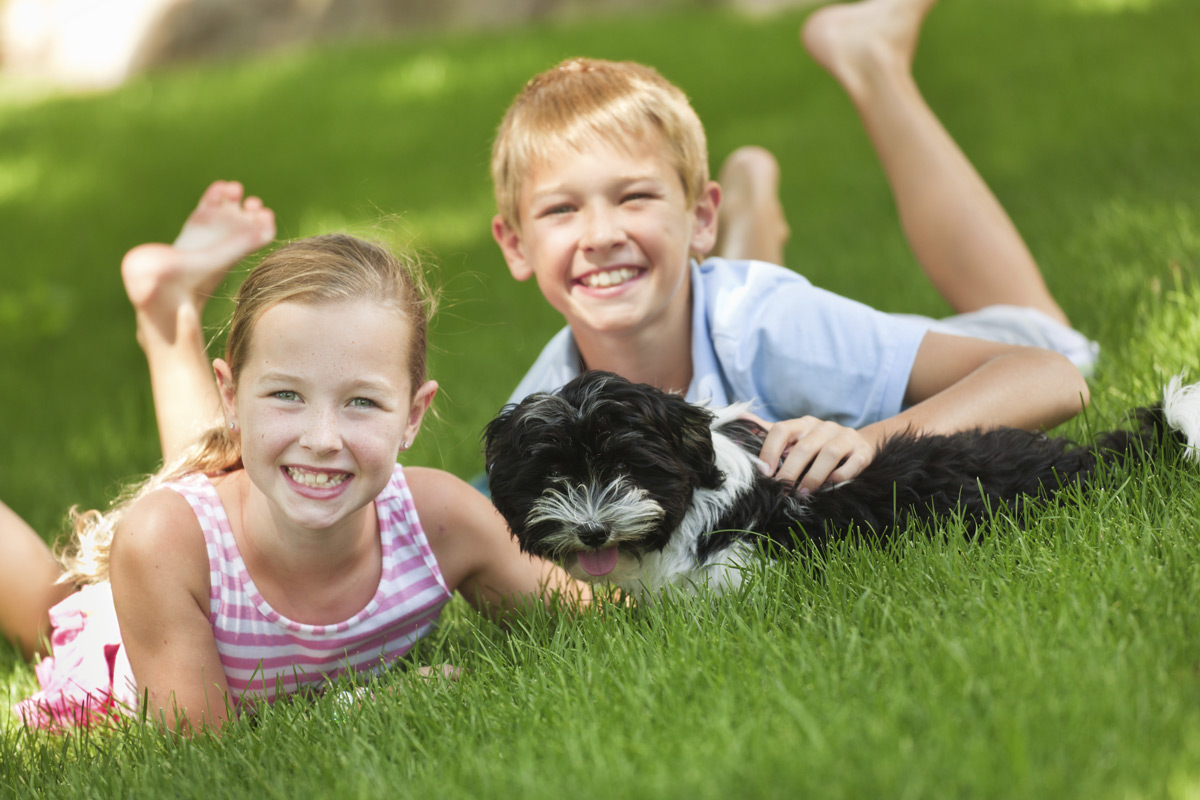 boy and girl laying in grass playing with puppy