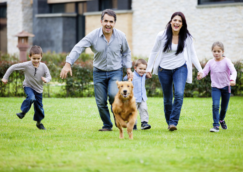 image, family chasing their dog